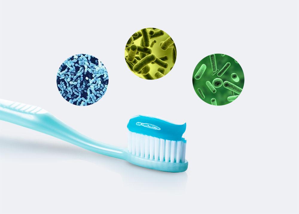 歯ブラシ除菌キャップコンパクト「型番TS-00」MDK-TS00